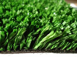 Особенности фибриллированной травы