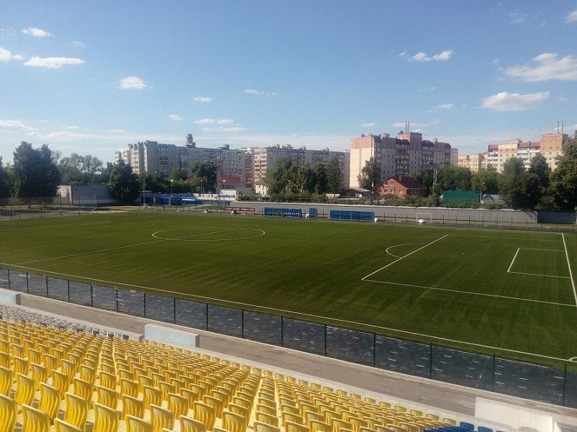 Реконструкцию футбольного поля в Коломне