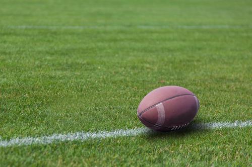 требования к траве для регби