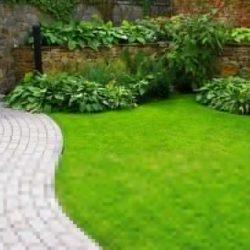 декоративный газон для сада искусственный