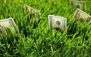 из чего складывается стоимость искусственного газона